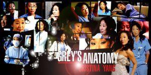 实习医生格蕾 Grey's Anatomy 第四季插曲/原声